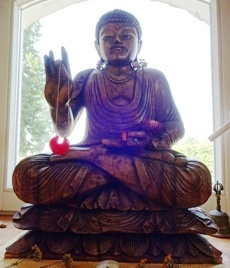 buddha neus licht
